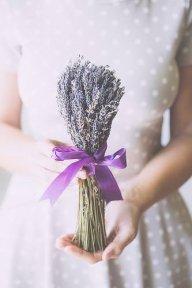 lavenderhanoi